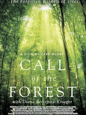 Call of the Forest Theatrical Poster